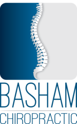 Basham Chiropractic nowra blue and grey spine